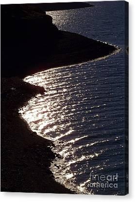 Shining Shoreline Canvas Print
