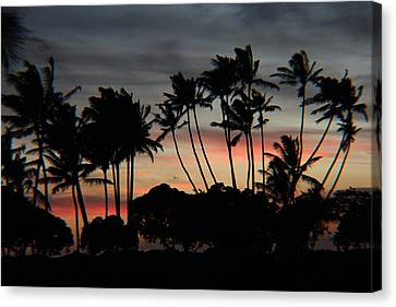 Shooting The Sunset Canvas Print by Raquel Amaral