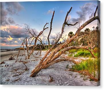Shoreline Beach Driftwood And Grass Canvas Print by Jenny Ellen Photography