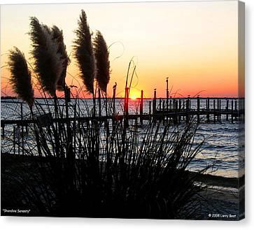 Shoreline Serenity Canvas Print