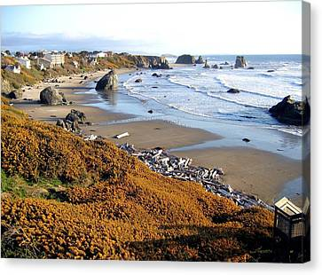 Canvas Print featuring the photograph Shores Of Oregon by Will Borden