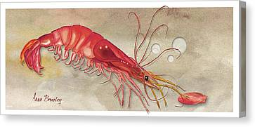Canvas Print featuring the painting Shrimp With Red Shell by Anne Beverley-Stamps