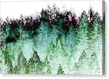 Shrouded In Fog Canvas Print by Will Borden
