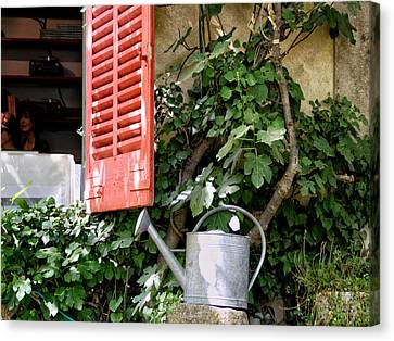 Shutters And Watering Can Canvas Print by Sandra Anderson