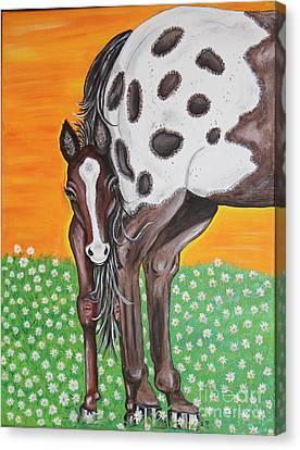 Shy Baby Canvas Print