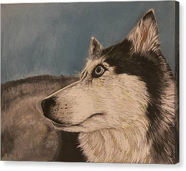 Canvas Print featuring the drawing Siberian Husky by Robert Decker