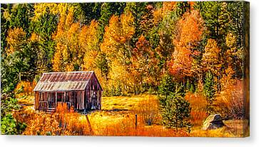 Sierra Nevada Aspen Fall Colors With Rustic Barn Canvas Print by Scott McGuire