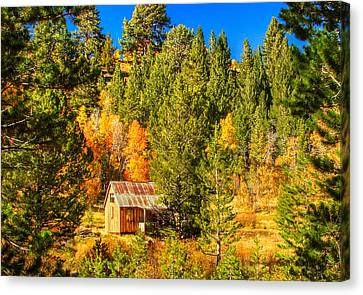 Sierra Nevada Rustic Americana Barn With Aspen Fall Color Canvas Print by Scott McGuire