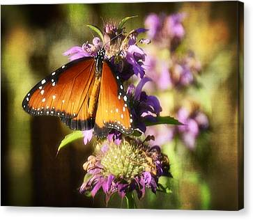 Signs Of Summer  Canvas Print