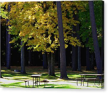 Silence In The Park Canvas Print by Ms Judi
