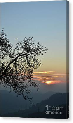 Canvas Print featuring the photograph Silhouette At Sunset by Bruno Santoro