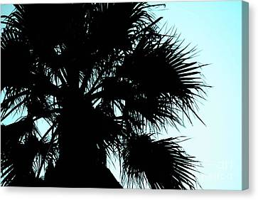 Canvas Print featuring the photograph Silhouette by Kim Pascu