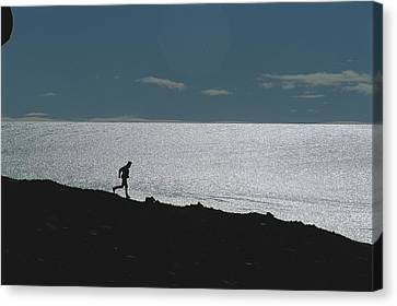 Silhouette Of Man Jogging Past A Bare Canvas Print