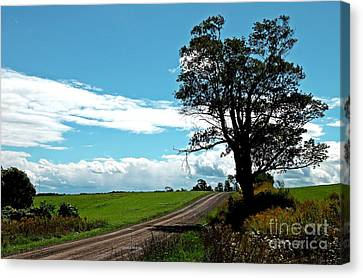 Canvas Print featuring the photograph Silhouette On A Country Road by Christian Mattison