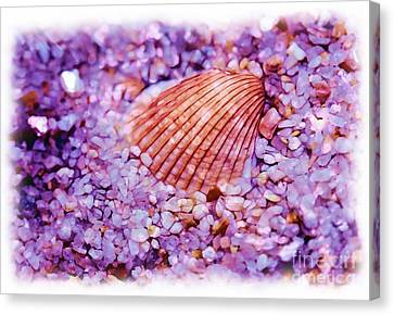 Silver Bells And Cockle Shells . . . Canvas Print by Judi Bagwell