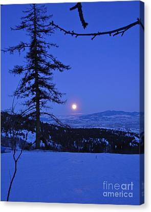 Silver-blue Moon Canvas Print by KD Johnson