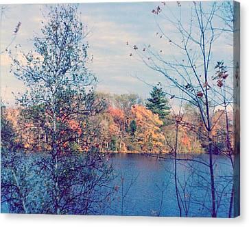 Silver Lake In Fall Canvas Print by Debbie Wassmann