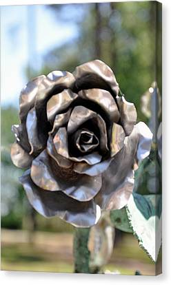 Canvas Print featuring the photograph Silver Rose by Helen Haw