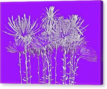 Silver Stems On Purple Canvas Print by James Mancini Heath