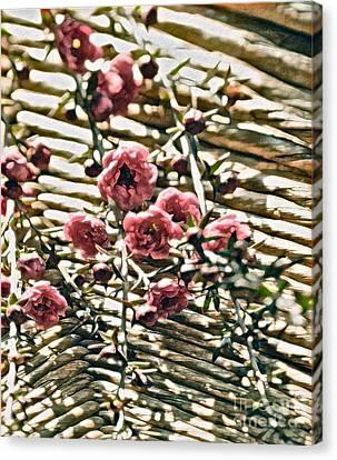 Simple Charm Canvas Print by Gwyn Newcombe