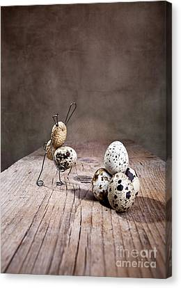 Quail Canvas Print - Simple Things Easter 01 by Nailia Schwarz