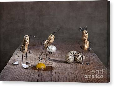 Quail Canvas Print - Simple Things Easter 06 by Nailia Schwarz