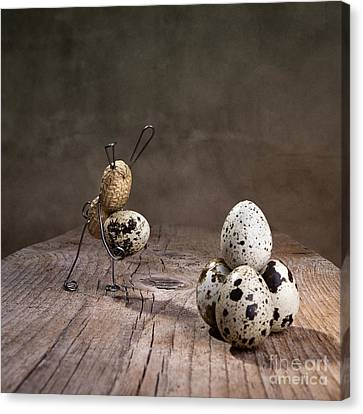 Quail Canvas Print - Simple Things Easter 07 by Nailia Schwarz