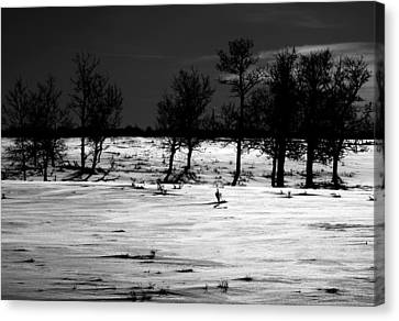Simple Trees Canvas Print by Empty Wall