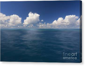 Simplicity Great Barrier Reef Canvas Print