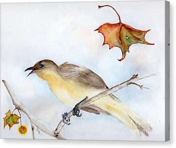 Singing Bird In Sycamore Canvas Print