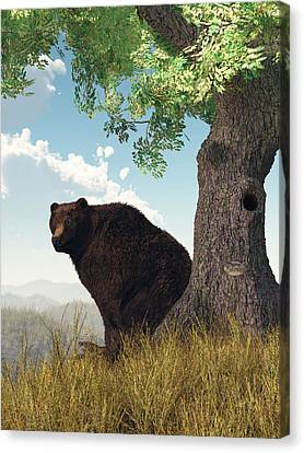 Sitting Bear Canvas Print by Daniel Eskridge