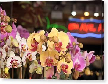 Sixth Avenue Orchids Canvas Print by Denice Breaux