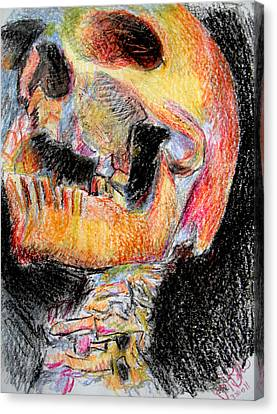Skull  Canvas Print by Jon Baldwin  Art