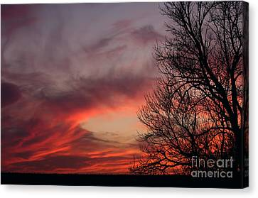 Sky On Fire Canvas Print by Art Whitton