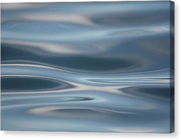 Sky Waves Canvas Print