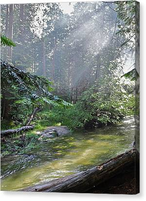 Canvas Print featuring the photograph Slanting Sunlight On River by Kirsten Giving