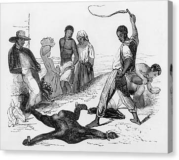 Slave Punishment In The French West Canvas Print by Everett