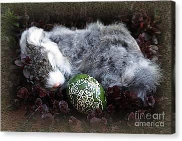 Sleeping Easter Bunny Canvas Print by Danuta Bennett