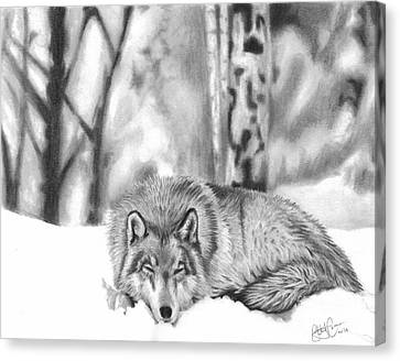 Sleeping In The Snow Canvas Print