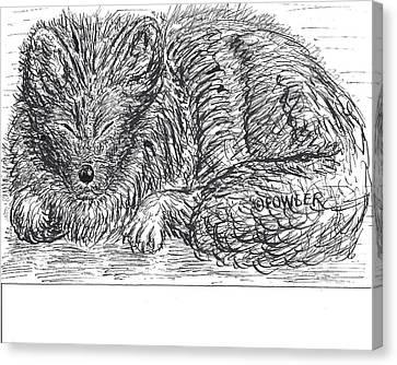 Sleepy Fox Canvas Print by John A Fowler