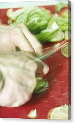 Sliced Limes Canvas Print by Cristina Pedrazzini