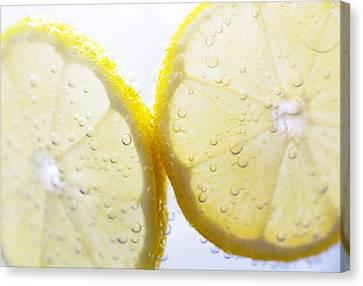 Lemons Canvas Print - Slices Of Lemon In Sparking Water by Louise Geoghegan