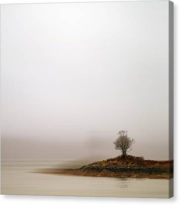 Small Island With Lone Tree Canvas Print by Andrew Lockie