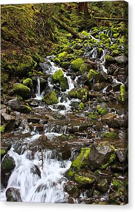 Small Waterfall Canvas Print by Mark Alder