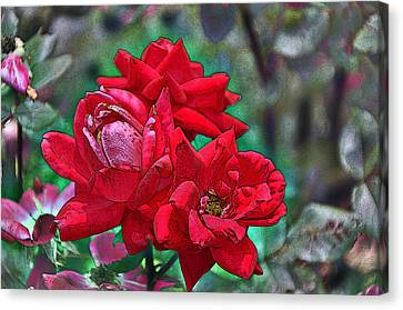 Smell The Roses Canvas Print by Paul Mashburn