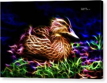 Smile Juvenile Mallard - Fractal Canvas Print by James Ahn