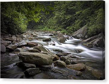 Smokey Mountains Canvas Print - Smokey Mountain Stream No.559 by Randall Nyhof