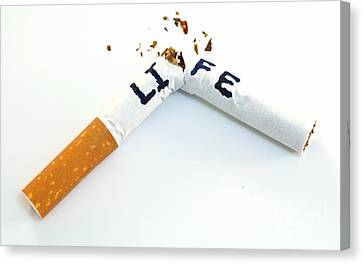 Smoking Shortens Life Canvas Print by Blink Images