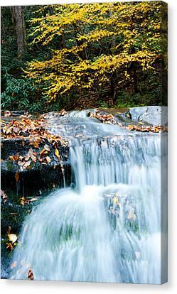 Smoky Mountain Waterfall Canvas Print