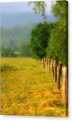 Smoky Mountains Cades Cove Canvas Print